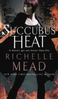 The turn and the flame richelle mead pdf